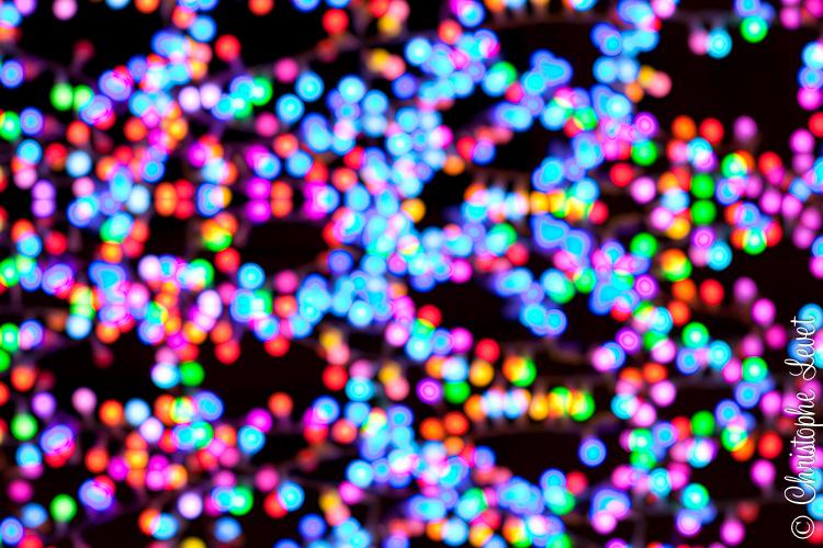 fêtes de fin d'année ©www.levetchristophe.fr